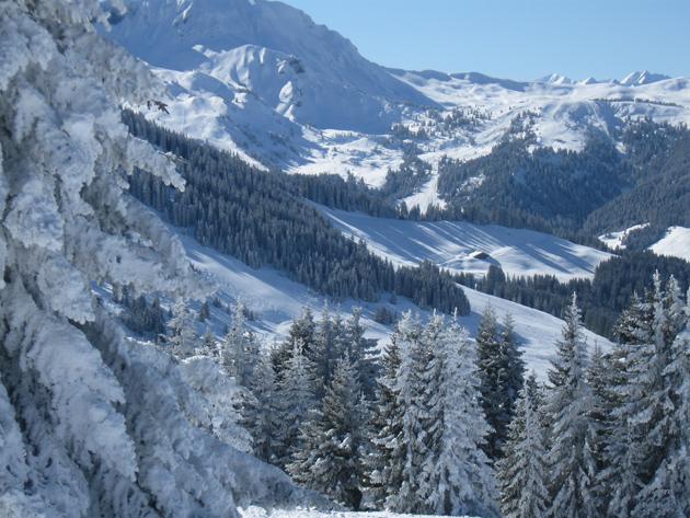 Domaines skiables Yannick Vigneron